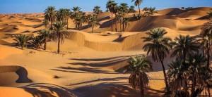 la cuisine du désert